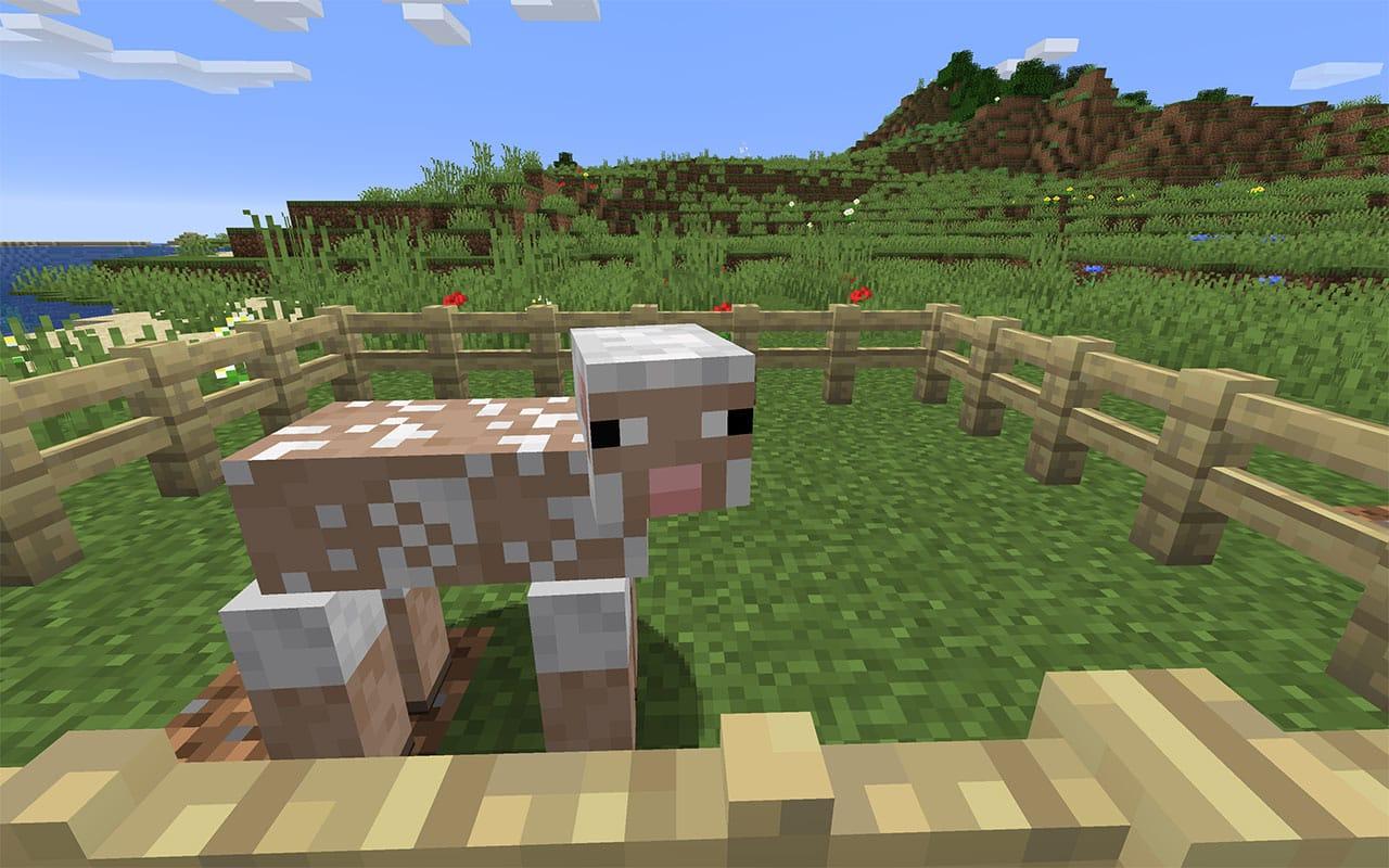 Shorn Sheep in Minecraft