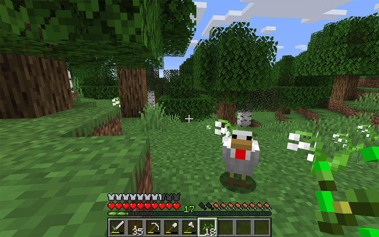 Tame a Chicken in Minecraft