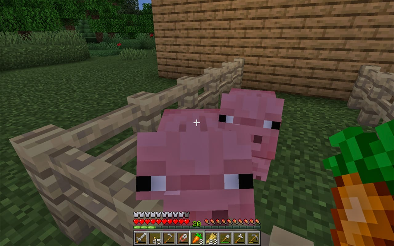 Minecraft Pigs in a Pen