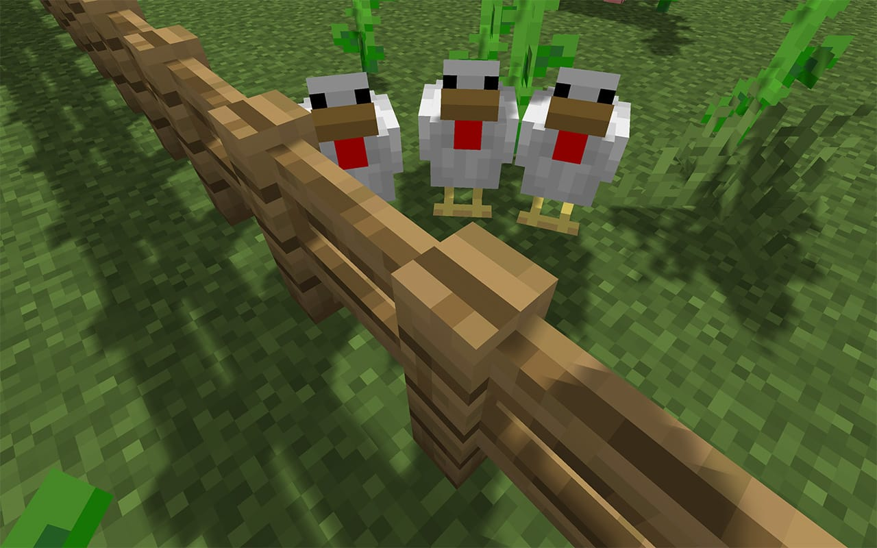 Three Little Chickens in Minecraft