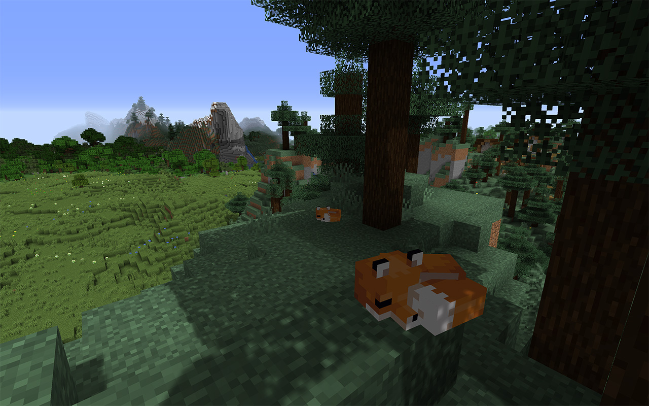 Two foxes asleep in the daytime